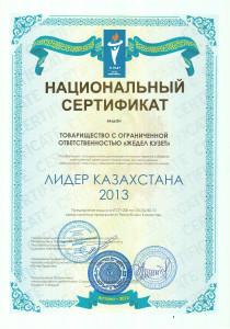 Лидер Казахстана 2013